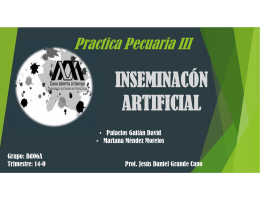 INSEMINACÓN ARTIFICIAL