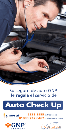 Flyer Auto Check Up versión 899