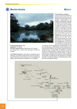 3. Montes Azules