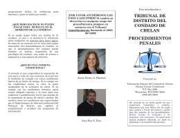 tribunal de distrito del condado de chelan procedimientos penales