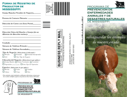 MADDPP cattle brochure Spanish.pub