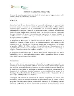 TERMINOS DE REFERENCIA CONSULTORIA