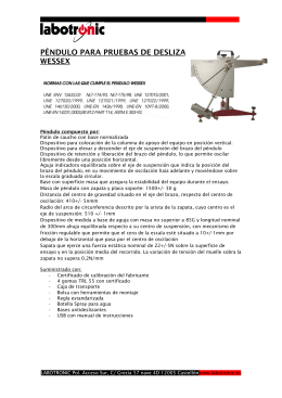 FOLLETO PENDULO WESSEX