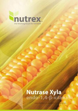 Nutrase xyla | una enzima, un mundo de beneficios
