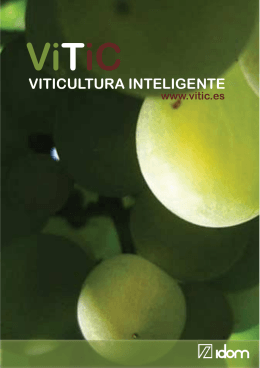 VITIC FOLLETO 4_2