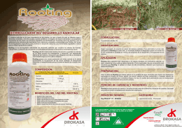 ROOTING - FOLLETO PUBLICITARIO