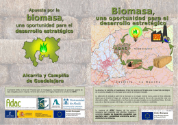 Biomasa, una oportunidad para el desarrollo estratégico