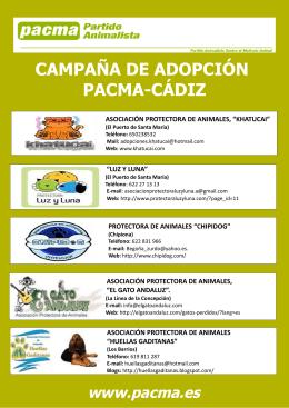 """Folleto protectoras de Cádiz. Campaña """"No compres, adopta"""""""