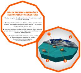 tips de eficiencia energética sector pesca y acuicultura