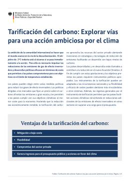 Tarificación del carbono: Explorar vías para una acción ambiciosa