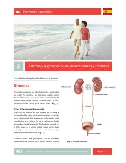 02_Síntomas y diagnóstico de los cálculos renales y ureterales