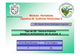 Horta04.II - Universidad Veracruzana