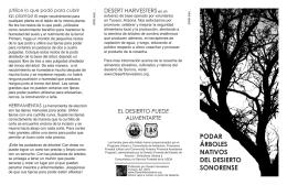 Podar Árboles Nativos del Desierto Sonorense
