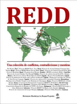 REDD: una colección de conflictos, contradicciones y mentiras
