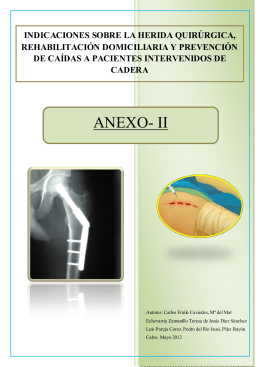 anexo ii - Enfermeria Basada en la Evidencia (EBE)