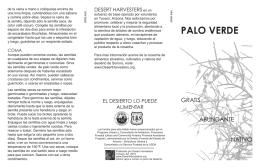Palo Verde (Español)
