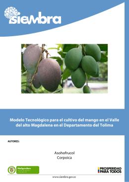 Modelo Tecnológico para el cultivo del mango en el