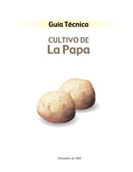 Guia Papa