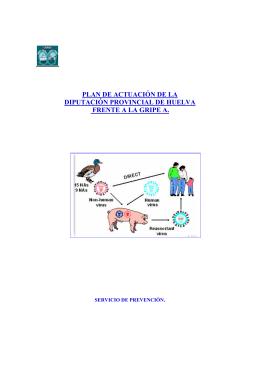 plan de actuación de la diputación provincial de huelva frente a la