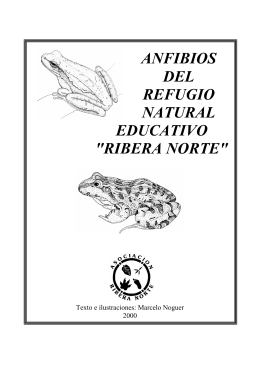 "anfibios del refugio natural educativo ""ribera norte"""
