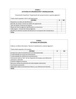 etapa 1 actividad de organización y jerarquizacion. etapa1 actividad