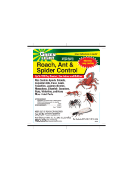 Roach, Ant & Spider Control