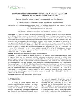 COMPONENTES DE RENDIMIENTO DE CANOLA (Brassica napus L.)