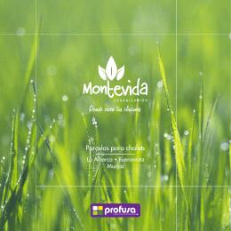 MONTEVIDA