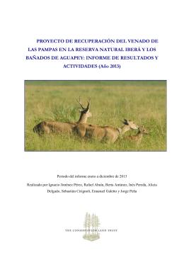 Proyecto de Recuperación del Venado de as Pampas: Informe de