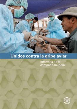 Unidos contra la gripe aviar