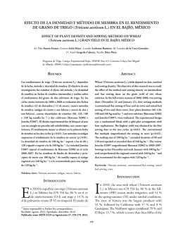 Efecto de la densidad y método de siembra en el rendimiento de
