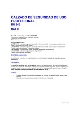 CALZADO DE SEGURIDAD DE USO PROFESIONAL