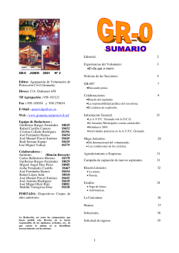 Consultar GR-0 número 2 versión pdf