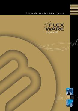 e-Flexware - Sistemas Bejerman