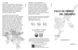 PALO DE FIERRO DEL DESIERTO
