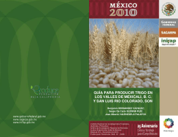 Trigo 2010 - Portal OEIDRUS Baja California