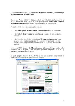"""""""PYME+i"""" y su estrategia de información y difusión (info)"""