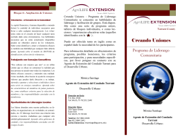 Building Connections Informational Brochure Spanish