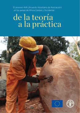 El proceso AVA (Acuerdo Voluntario de Asociación) en los países