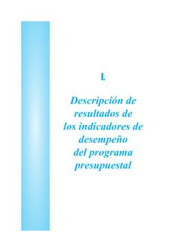 Descripción de resultados de los indicadores de desempeño