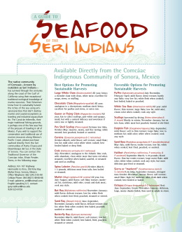 Guide to Seafood of the Seri Indians