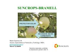 charla divulgativa suncrops