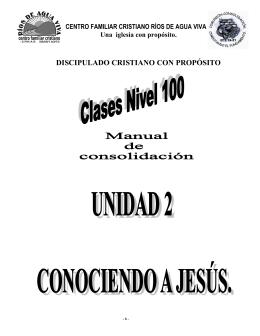 02. PDF. Manual de consolidacion