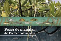 Peces de manglar
