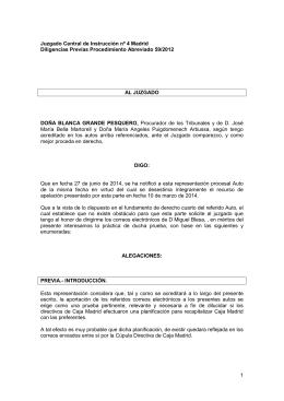 Juzgado Central de Instrucción nº 4 Madrid Diligencias Previas