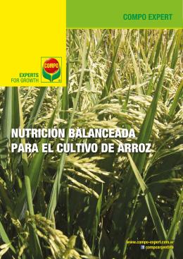 NUTRICIÓN BALANCEADA PARA EL CULTIVO DE ARROZ