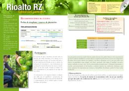 Calidad para primavera Rioalto RZ