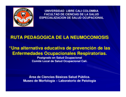 "RUTA PEDAGOGICA DE LA NEUMOCONIOSIS ""Una alternativa"
