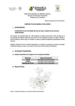 DIRECCIÓN GENERAL DE SANIDAD VEGETAL