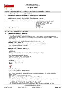 Ficha de datos de seguridad de `L-31 QUITA-POLVO